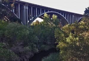 Bridge_bramble_water_highlights