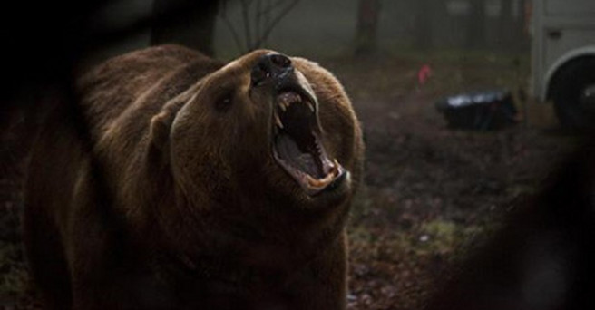 grizzly-maze-trailer