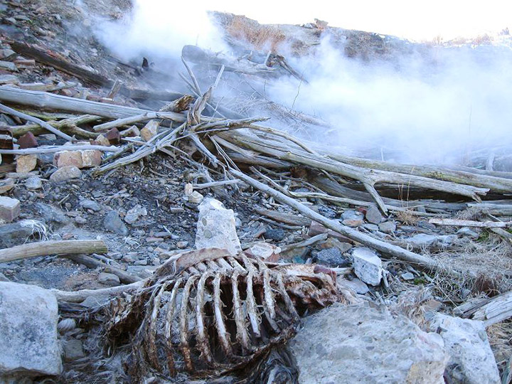 centralia-mine-fire-skeleton