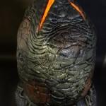 1300x-Alien_Egg7