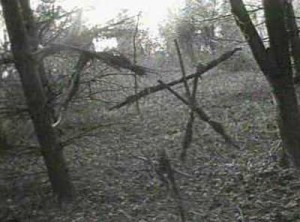 blair_witch_sticks